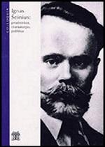 Ignas Šeinius: prozininkas, dramaturgas, politikas. – Vilnius, 2001. Knygos viršelis