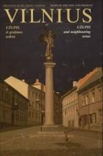 Lisauskas, Vytautas. Vilnius: Užupis ir gretimos erdvės. – Vilnius, 2002. Knygos viršelis