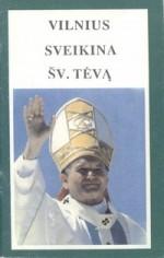 Vilnius sveikina šv. Tėvą: 1-oji popiežiaus Jono Pauliaus II vizito Vilniuje diena (rugs. 4 d.). - Vilnius, 1993. Knygos viršelis
