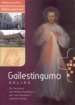 Gailestingumo kelias : šv. Faustinos, pal. Mykolo Sopočkos ir pal. Jono Pauliaus II pėdomis Vilniuje : maldų devyndienis : vadovas piligrimams. – Vilnius, 2011. Knygos viršeli